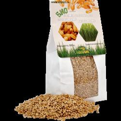 Пшеница для проращивания и выращивания витграсса.<br> Масса нетто: 500 гр