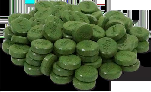 витграсс-таблетки